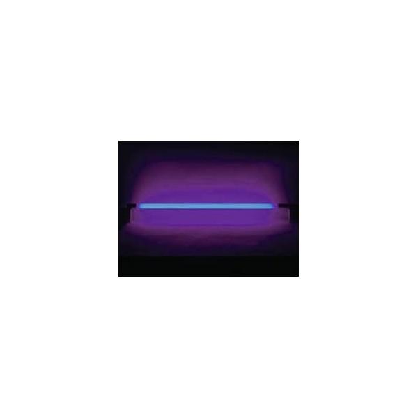 Néon lumière noire